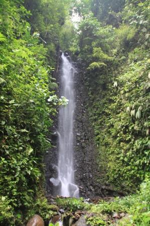 Cascada Chontal